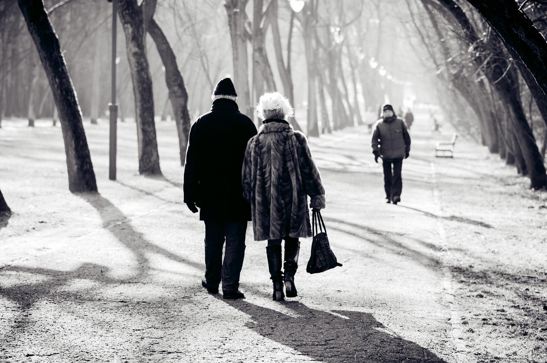 rencontres entre seniors à Lille