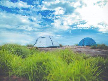tentes dans une prairie
